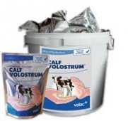 Calf Volostrum